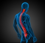 What Procedures May Be Performed During Spinal Revision Surgery?