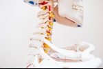 Exploring the Causes of Spinal Stenosis