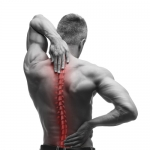 Get Acquainted with Your Spinal Discs